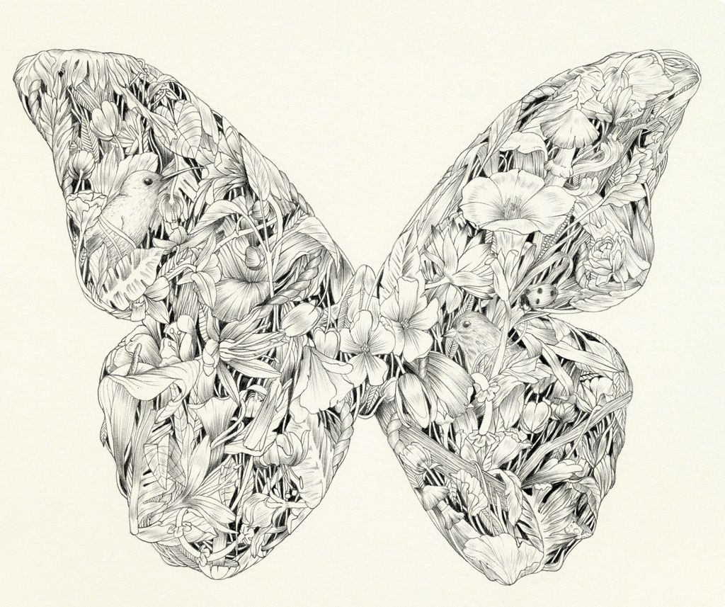 Papillon-0