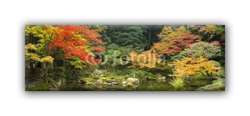 Nature automne-0