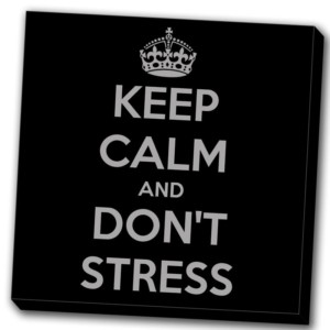 tableau keep calm and don't stress