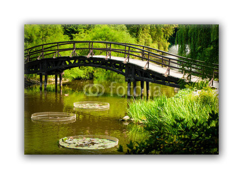 Pont nature-0