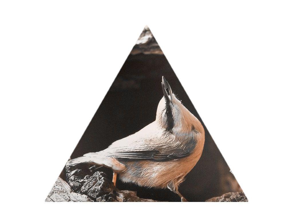 Impression sur Forex découpée en triangle